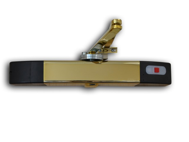 Agrippa Door Closer Unit - Polished Brass